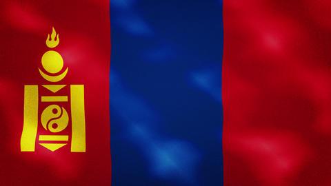 Mongolian dense flag fabric wavers, background loop Acción en vivo