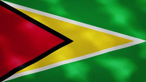 Guyana dense flag fabric wavers, background loop Acción en vivo