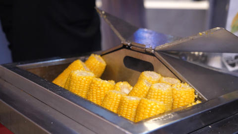 tasty fresh hot boiled corn on cobs in metal stove in cafe Live Action
