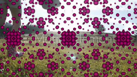 Pattern Transition MOGRT Motion Graphics Template