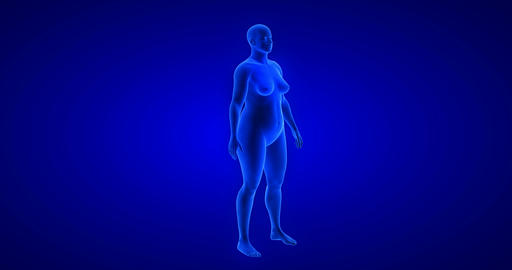 Weight loss - body transformation - woman theme. Blue Human Anatomy Body 3D Scan Live Action
