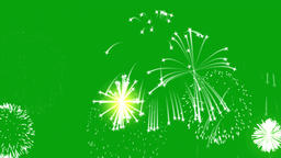 Fireworks motion graphics with green screen background CG動画