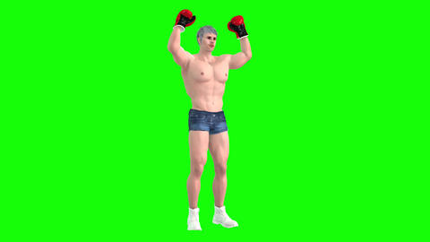783 4k Sport Health 3D computer generated man greeting and boxing Animation