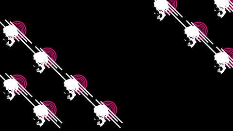 LRV_skull05_1080 Animation