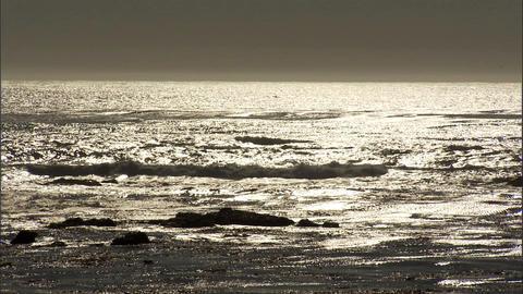 Ocean Golden 1 Stock Video Footage