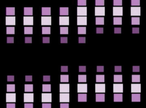 purp Cube pulse(L) Animation