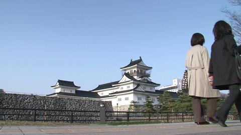 Toyama / Azumi Castle Walkers 富山 安住城 Stock Video Footage