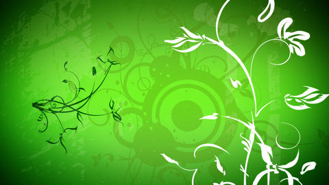 Vector flowers 2 loop Stock Video Footage