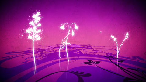 Vector flowers 6 loop Stock Video Footage