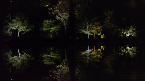 Woods reflection in calm water of lake.Such as mirror at... Stock Video Footage