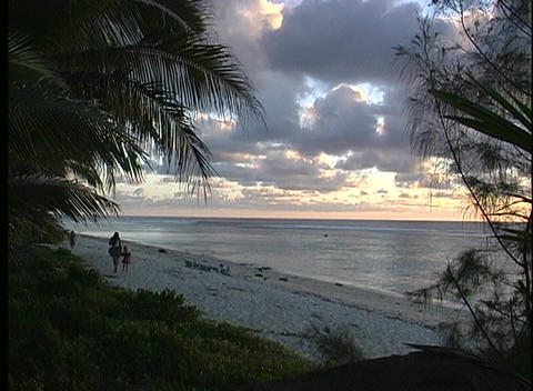 Trees and grasses providing a framework for Rarotongs's beach during golden-hour one of the Cook Isl Footage