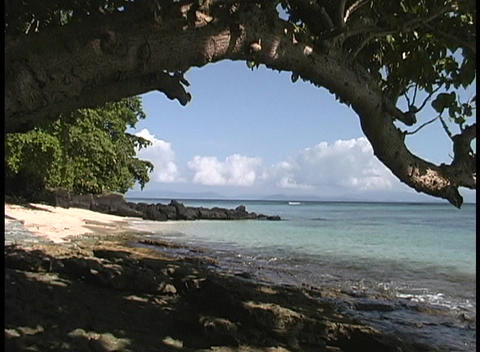 An establishing shot of the shoreline on a south pacific island Footage