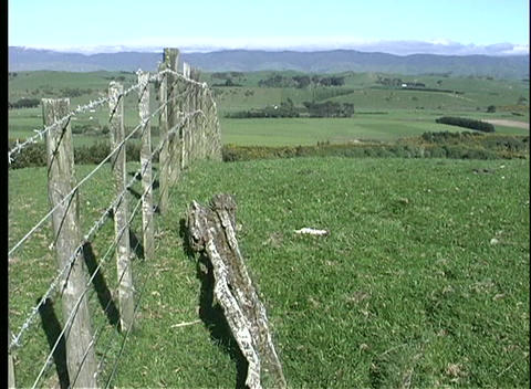 Rolling green hills and pastures highlighted by a rustic, weathered barbed-wire fence Footage