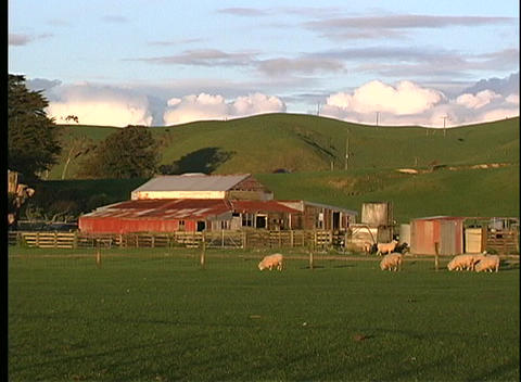 A medium shot of a scenic ranch and hills in New Zealand Stock Video Footage