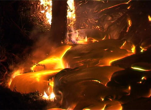 Lava oozing from a volcano surrounds trees and flows into... Stock Video Footage