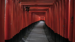 Red torii gates at Fushimi-Inari Shrine, Kyoto, Japan Footage