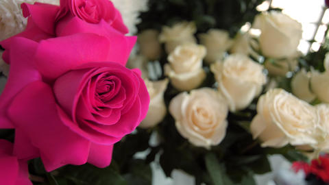 gorgeous aromatic pink and white rose flowers in vases Live Action