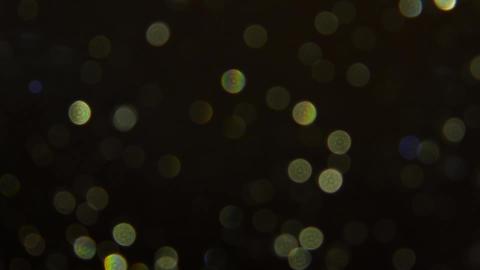 Rain Drops In The Dark Live Action