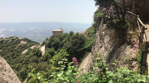 Montserrat, Spain, A tree with a mountain in the background Live Action