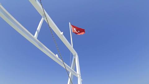 Turkish Flag 1