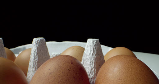 box of eggs super macro closeup shoot Live Action