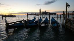 Gondolas at night, Venice Footage