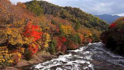 Ryuzu Falls, Nikko, Tochigi Prefecture, Japan Footage