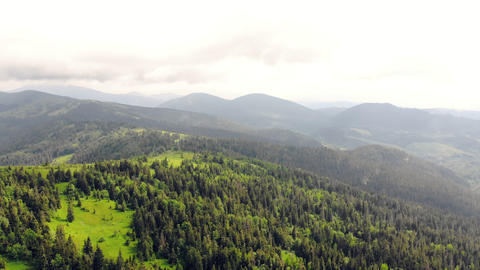 Aerial Drone View mountains covered with green grass and green trees. View of Live Action