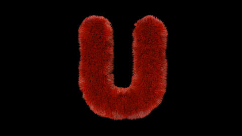 Fluffy hair fur text typography with alpha channel U Animation
