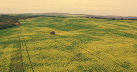 Agriculture Tractor Spraying Summer Crop Wheat Field Footage