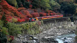Sagano Romantic Train at Hozu Gorge, Kyoto, Japan Footage