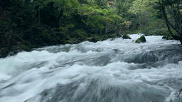 Oirase Mountain Stream, Aomori Prefecture, Japan Footage