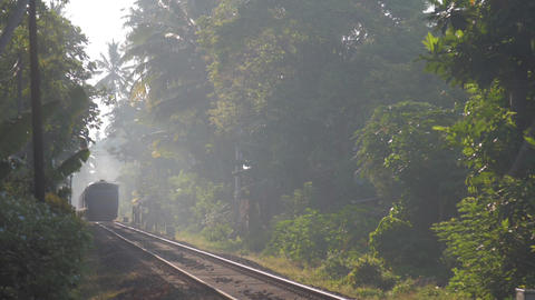train rides among wild nature transporting sick people Live Action