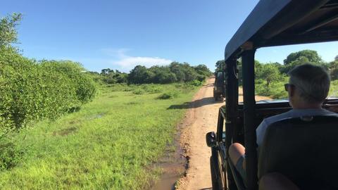 Yala, Sri Lanka, November 30, 2019, tourists sit in jeeps Live Action