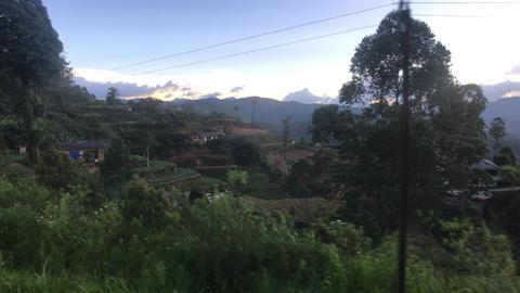 Ella, Sri Lanka, lowland settlement Live Action
