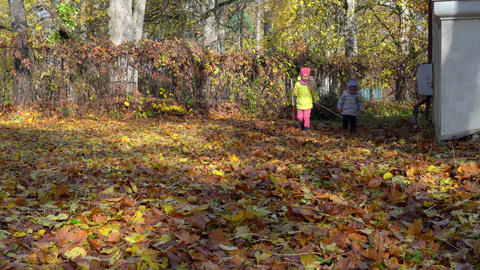 Little brother and sister raking leaves in garden on an Autumn day Live Action