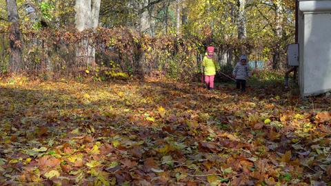 Little brother and sister raking leaves in garden on an Autumn day Acción en vivo