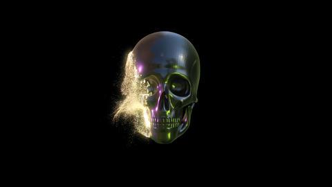 Scifi Skull Dissolve Animation