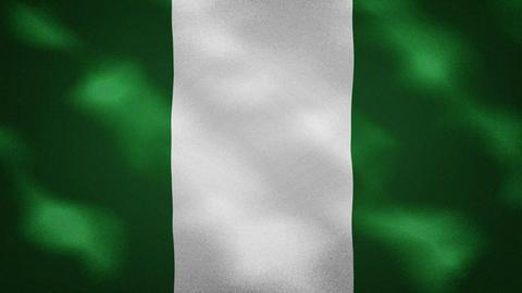 Nigeria dense flag fabric wavers, background loop Animation