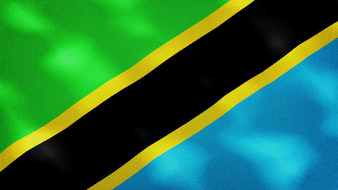 Tanzania dense flag fabric wavers, background loop Animation