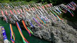 Koinobori flying carps, Wakayama Prefecture, Japan Footage
