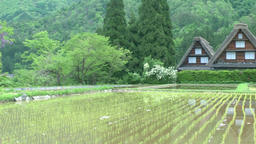 Shirakawa Village, Gifu Prefecture, Japan Footage