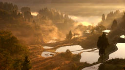 Morning fog, Niigata Prefecture, Japan Footage