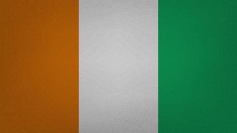 Ivory Coast - Cote dIvoire dense flag fabric wavers, background loop Animation