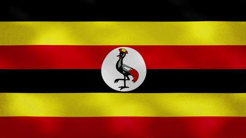 Ugandan dense flag fabric wavers, background loop Animation