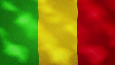 Mali dense flag fabric wavers, background loop Videos animados
