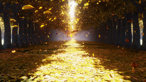The camera flies through the autumn Park. Autumn leaves fall from the trees and fly towards. Autumn Animation