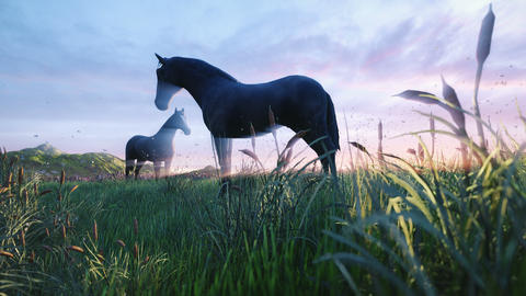 Two young horses graze on a picturesque green meadow on a beautiful spring morning lit by the Golden Animation