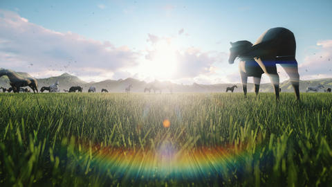 A herd of horses graze on a picturesque green meadow on a beautiful summer morning, illuminated by Animation