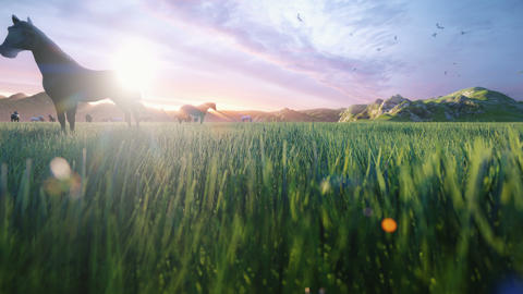 A herd of horses graze on a picturesque green meadow on a beautiful spring morning, illuminated by Animation